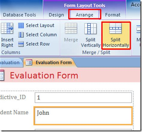 open form in layout view access access 2010 split form input box