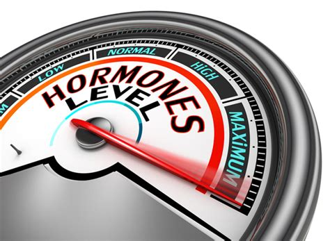 ormoni e alimentazione la dieta dei sette ormoni salute e benessere salute e