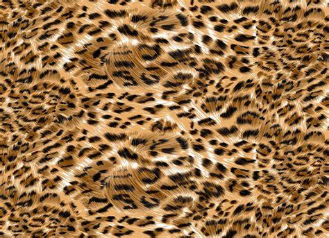 Leopard Design Wallpaper leopard design wallpaper gallery