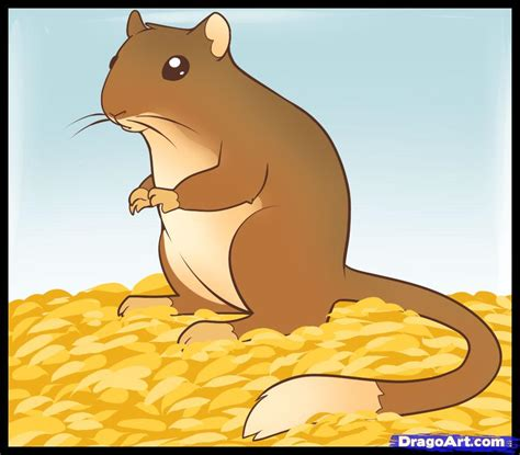 a drawing how to draw a gerbil step by step pets animals free drawing tutorial added