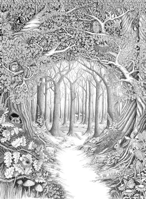 secret garden or enchanted forest coloring book inspirational coloring pages from secret garden enchanted