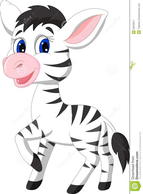 cute baby zebra cartoon royalty free stock photography
