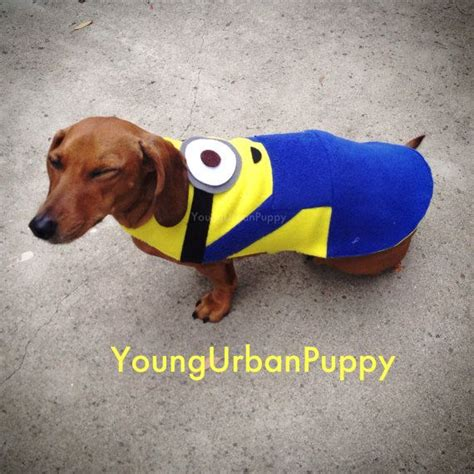 minion costumes for dogs minion inspired custom costume