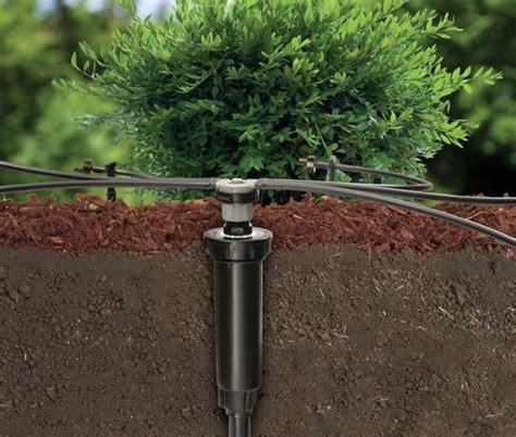 irrigazione giardini fai da te impianto irrigazione fai da te impianto irrigazione