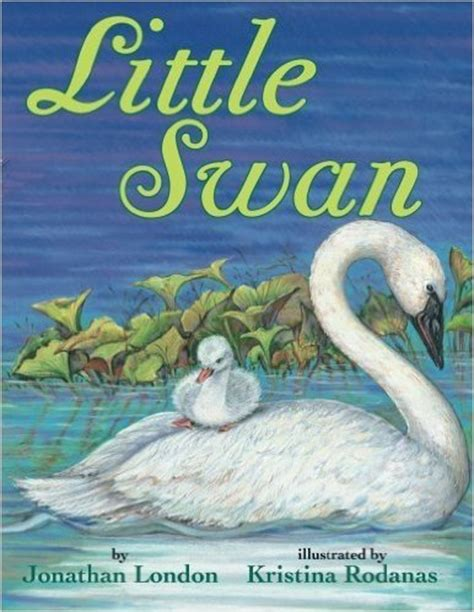 the swan book a novel books gift ideas for the twelve days of days 7 9