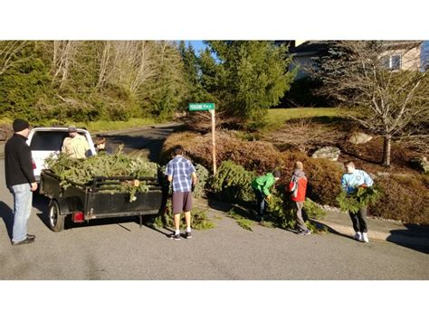 boy scouts tree recycling boy scout tree recycling saturday january 3rd patch