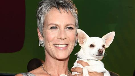 jamie lee curtis quotes this jamie lee curtis quote about aging is right on the money