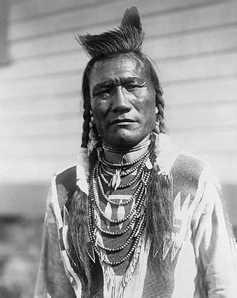why do so many americans think they have cherokee blood