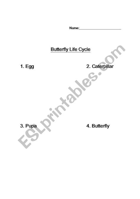 Free Butterfly Cycle Worksheet Cut And Paste