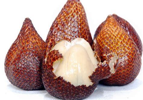 informasi tentang buah salak  nama latin salacca
