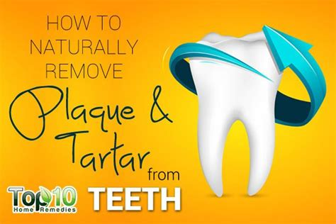 how to remove plaque from s teeth naturally how to remove tartar plaque from teeth tips
