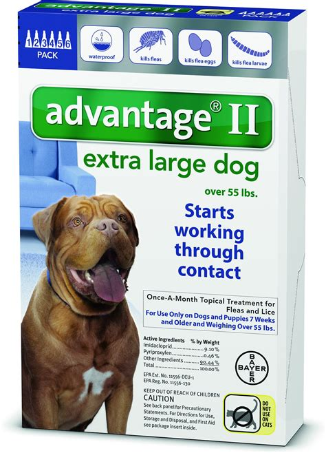 flea remedies for puppies advantage ii flea treatment for dogs 55 lbs 6 treatments chewy