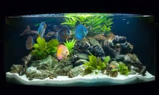 Fish ? Fish Laboratory