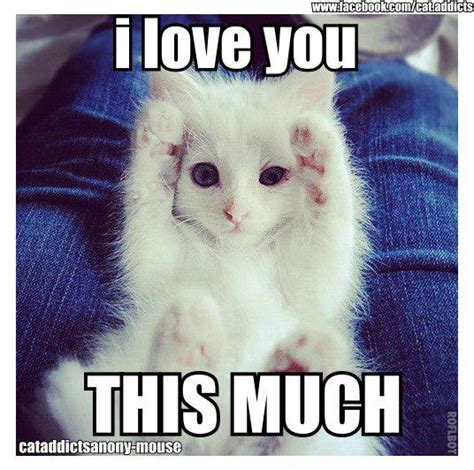 Cute I Love You Meme - shapescapes 2012