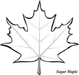 Fall Wall Decor - 25 best maple leaf images ideas on pinterest autumn leaf color maple leaf tree and maple