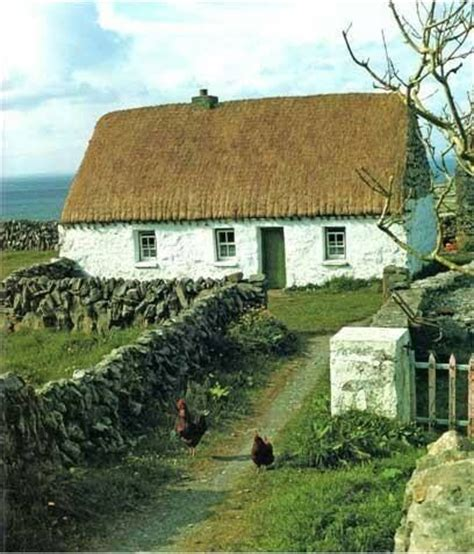 thatched cottages ireland thatch cottage