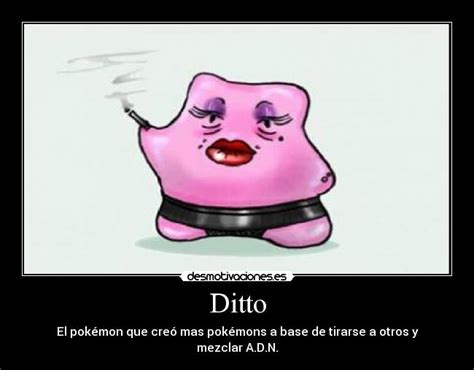 Ditto Memes - pokemon x y mega ditto images pokemon images