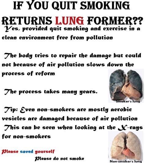 Pb Ban Dalam United 20 Quot smokers lungs december 2013