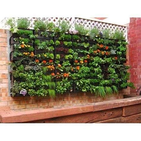 vertical garden material at rs 750 square mumbai