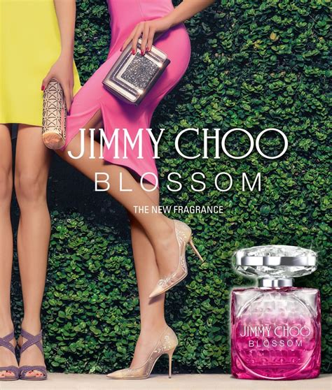 Jimmy Choo Blossom For Edp 100ml blossom jimmy choo perfume a new fragrance for 2015