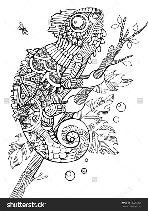 chameleon coloring page chameleon coloring page for adults zentangle style