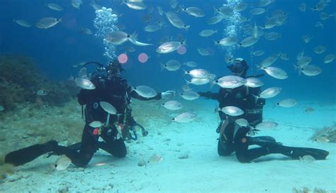 dive sicily scuba diving in italy the best offers in sport