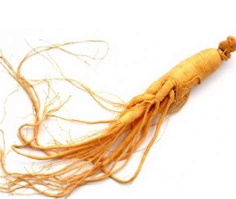 Masker Rambut Ginseng manfaat ginseng untuk melebatkan rambut dengan cepat