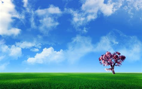 free backgrounds widescreen wallpapers download free pictures free desktop wallpaper downloads 3d huge collection of
