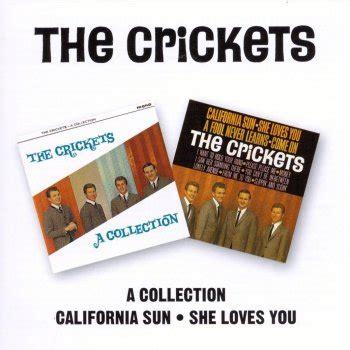 testo california testi california sun the crickets a collection the