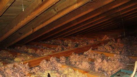 Attic Services   Pacific Coast Termite