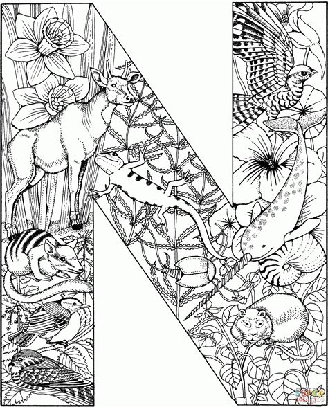 coloring pictures of letter n letter n coloring pages preschool 416099