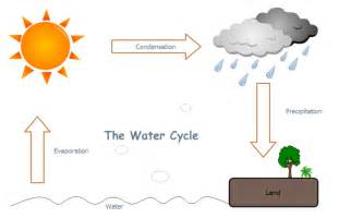 water cycle free water cycle templates