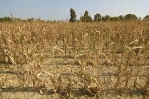 Rural Development Usda drought