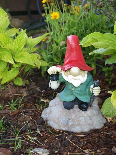 garden gnome  stock photo public domain pictures