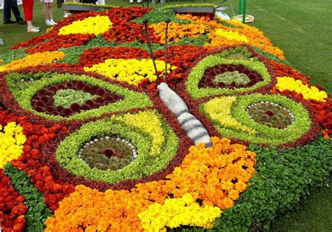 12 Beautiful Butterfly Designs To Shape Your Garden Butterfly Flower Garden
