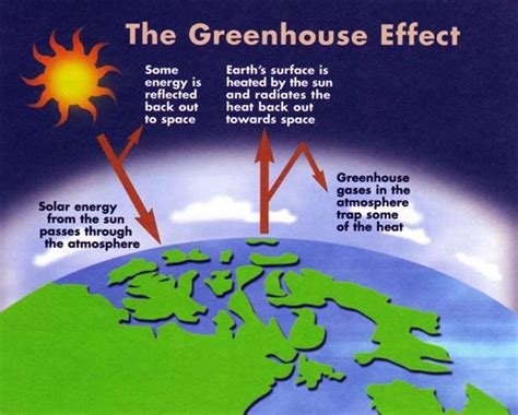what is the green house effect greenhouse effect