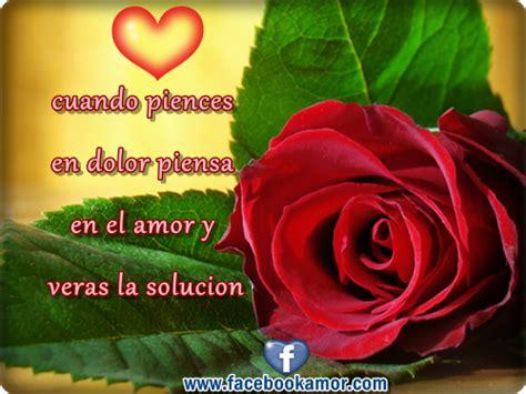 imagenes de rosas rojas para facebook image gallery hermosas flores facebook