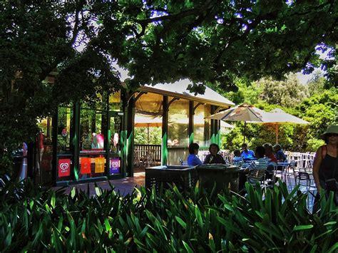 Botanical Gardens Restaurant Adelaide Botanic Gardens Cafe Adelaide The Adelaide Botanic Gardens Restaurant And Caf 233 South