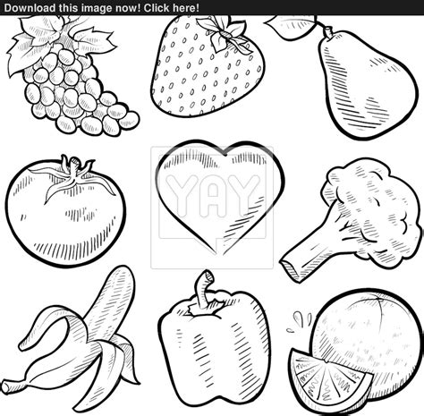 vegetables clipart black and white fruit and vegetable clipart black and white clipground