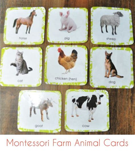montessori printables animals montessori farm animal cards png free print montessori