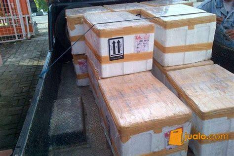 Home Lunch Box Rice Cooker Tlb 111 box styrofoam ex makanan beku jualo