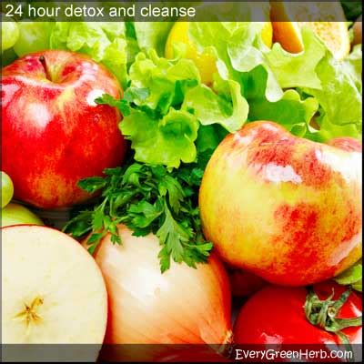 24 Hour System Detox by Tips For Detoxing Fasting And Cleansing With Medicinal Herbs