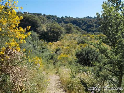 libro promenades dans la barcelone balade nature facile 224 barcelone voyage en espagne blog