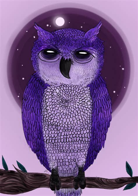 Owl Purple by Purple Owl By Chocoreaper Owls 1
