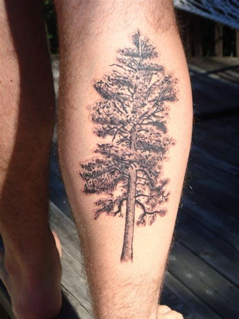 leg tree tattoos pine tree tattoos designs ideas and meaning tattoos for you
