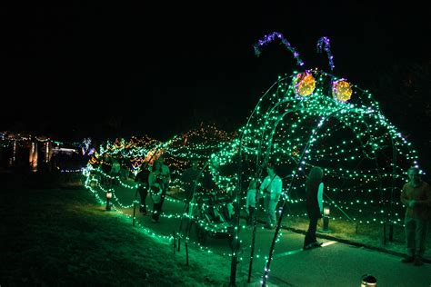 lewis ginter botanical garden lights lewis ginter botanical garden lights coupon garden ftempo