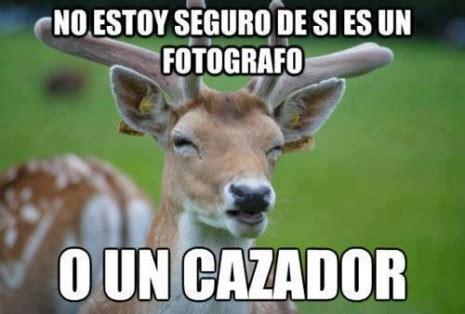 imagenes para whatsapp animales imagenes graciosas de animales para whatsapp im 225 genes