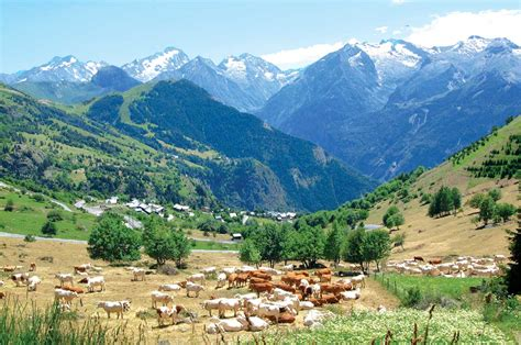 Misadventure In The Alps Part I by A Cheese Lover S Guide To Canvas Holidays