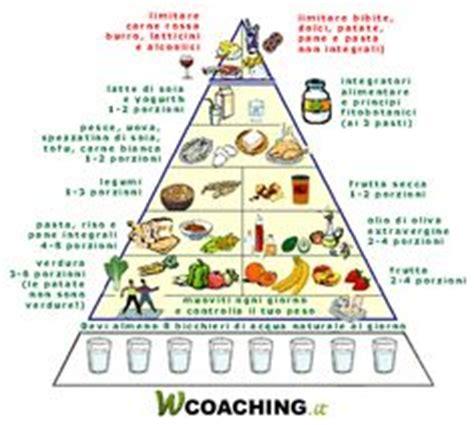 piramide alimentare inran nuova piramide alimentare le linee guida della nuova
