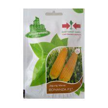 Benih Jagung Bonanza cara menanam dan budidaya durian montong